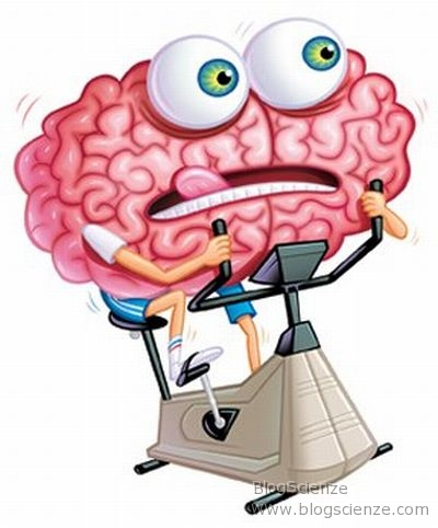 sport-cervello-fitness-nintendo-brain-age