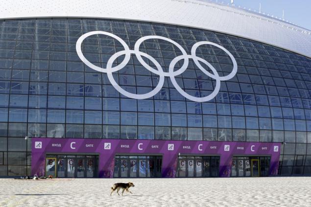 Cani-Sochi-1
