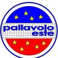 (Immagine: pallavoloeste.com)