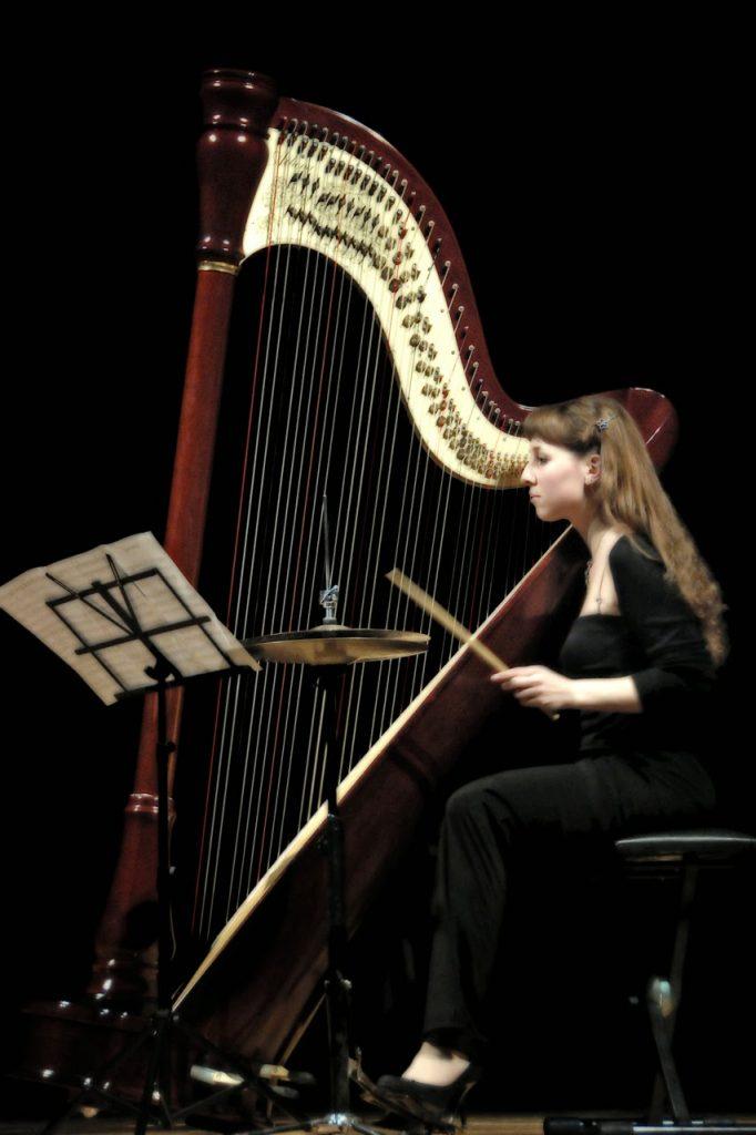 Micol Picchioni in Concerto fonti: plus.google.com