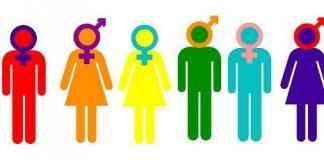 teoria gender