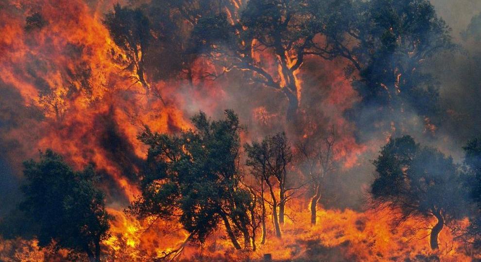 (Foto: www.h24notizie.com)