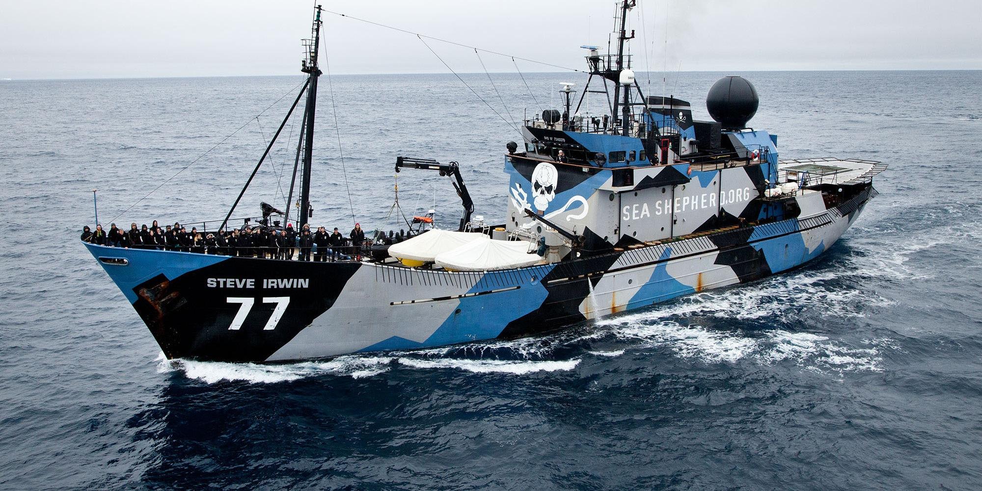 (Una delle navi di Sea Shepherd. Fonte immagine: www.seashepherdglobal.org)